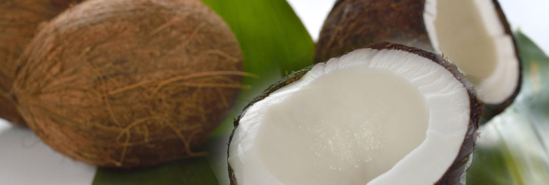 Die Vorzüge von Kokosöl
