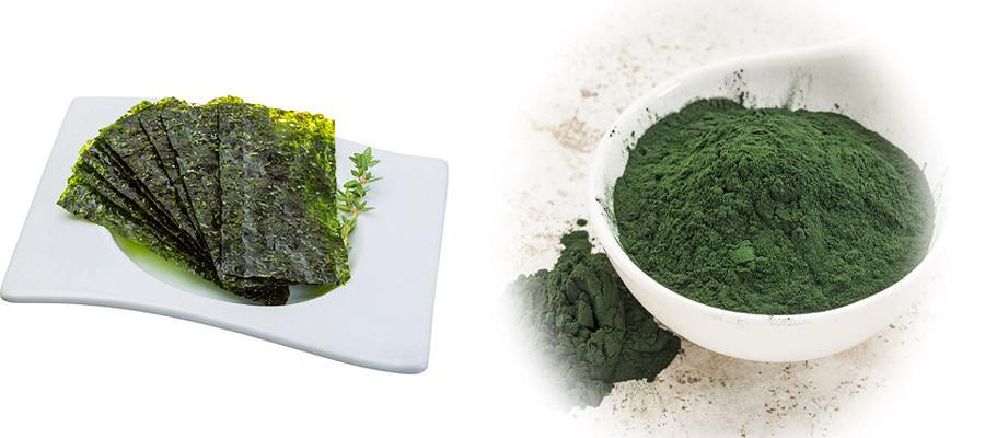 Algen als Nahrung und Nahrungsergänzung