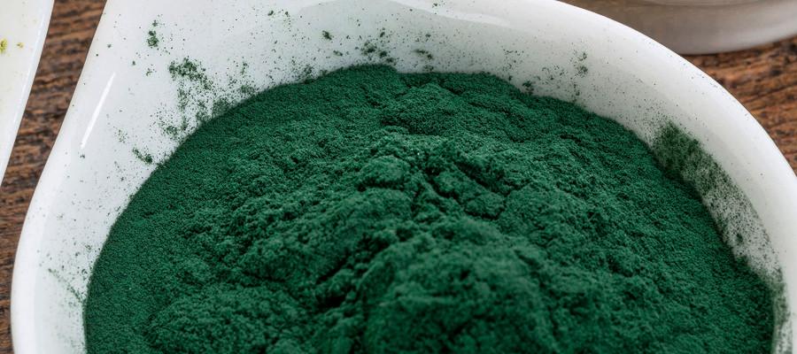 Spirulina Inhaltsstoffe der Alge